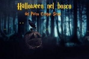 Halloween parco Cinque sensi