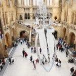 Londra, il museo di Storia naturale