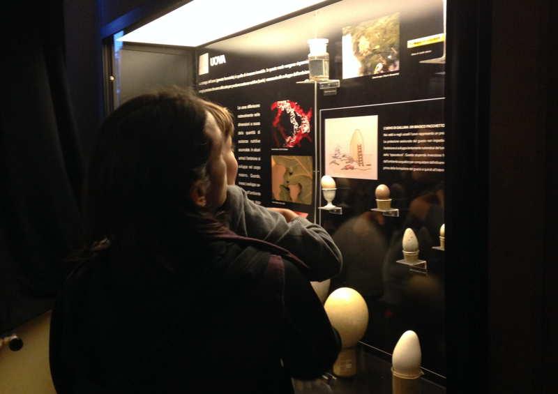 al museo con papà Roma