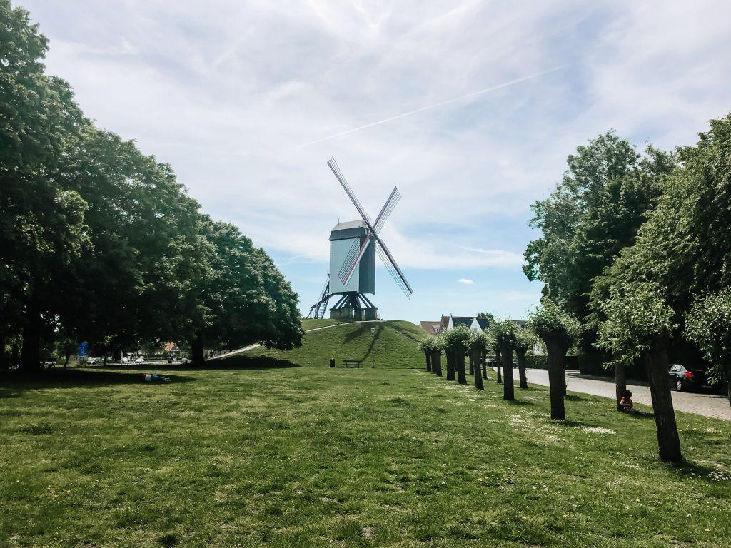Bruges mulini