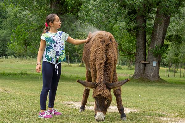 Val fondillo bambini pony