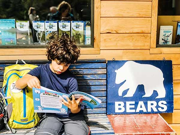 canada orsi bambini