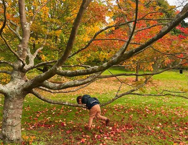 londra autunno