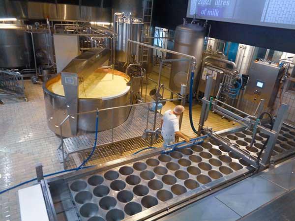 svizzera fabbrica formaggio