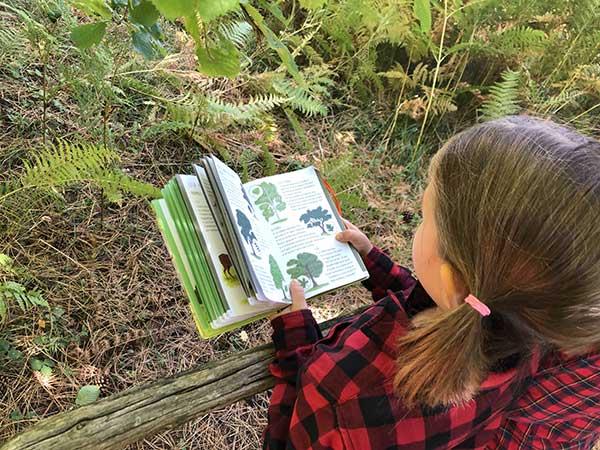 giganti della sila flora libro
