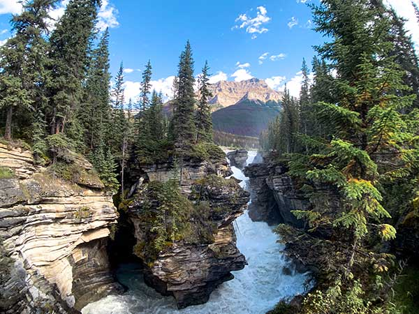 jasper alberta athabasca falls