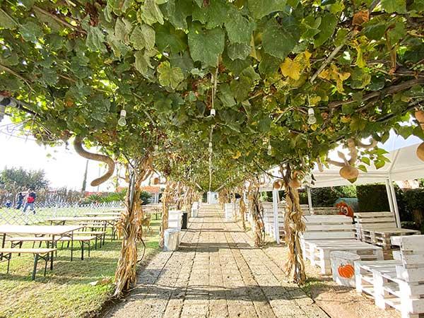 giardino zucche napoli