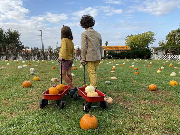 zucche bambini halloween