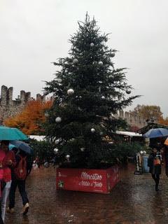 albero di natale piazza trento