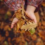 mani bimba piene di foglie autunnali