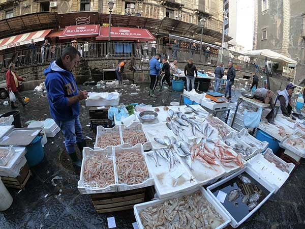 mercato pesce catania