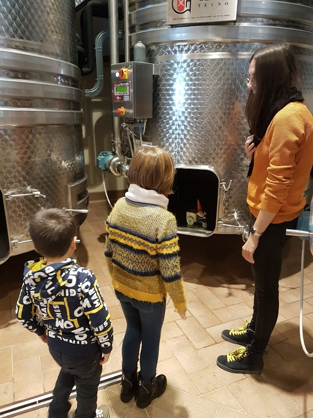 bambini in cantina vino