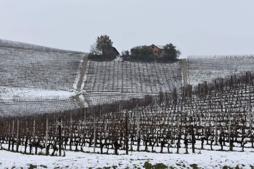 campi nelle lanche con neve