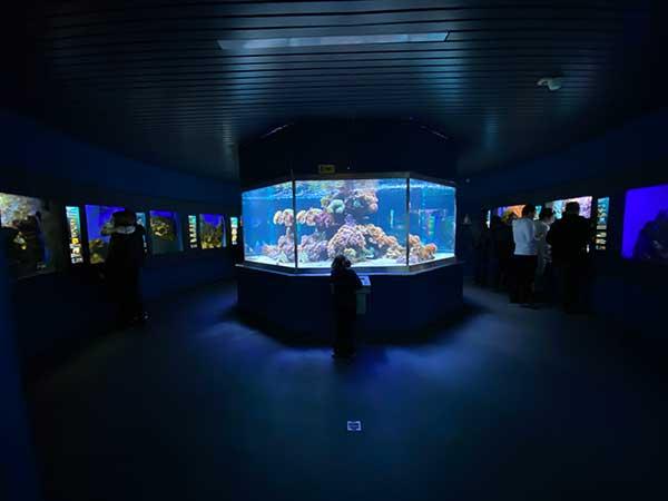 acquario museo della natura di salisburgo