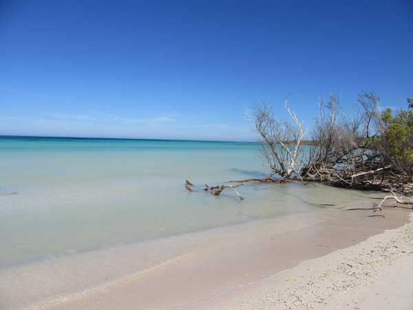 spiaggia cayo Jutias