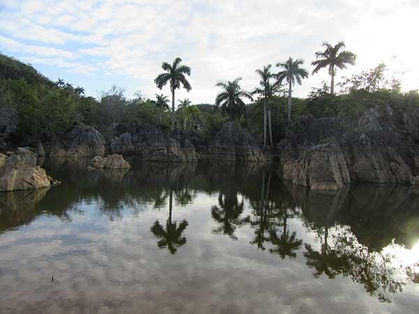 Lago vianles