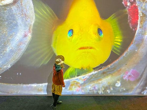 bambina con immagine di un grandepesce giallo
