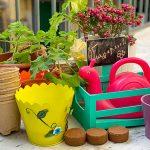 piante sul balcone con innaffiatoio