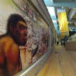 musei per bambini in Molise