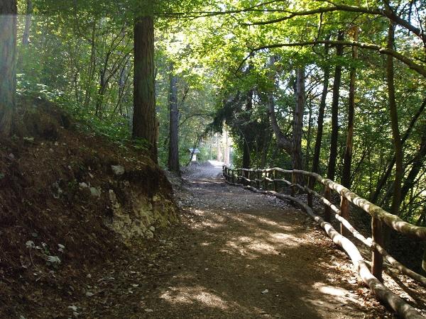 il sentiero per il rifugio Bindesi
