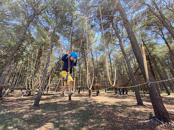 bambino percorso tra gli alberi