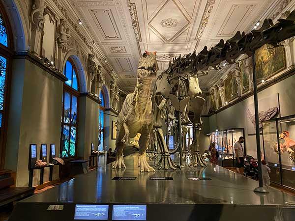 Museo di Storia Naturale di Vienna dinosauro