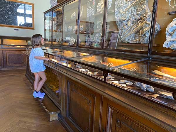 bambina nel Museo di Storia Naturale di Vienna