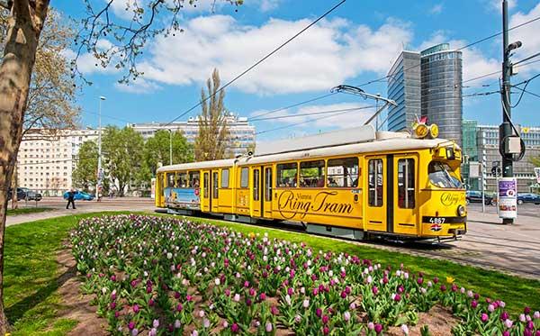 tram turistico Vienna