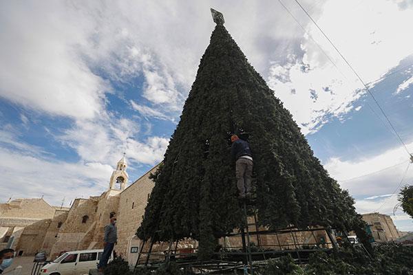 albero di Natale a betlemme