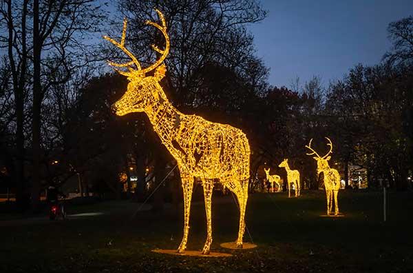 luci di Natale renna