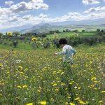 bambino in un campo di fiori